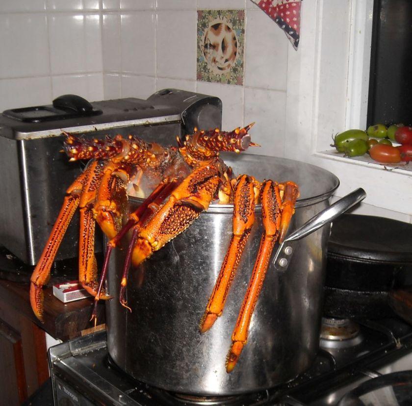 bigger pot