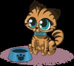 kitty-1459135